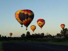 Six ballooons taking off at sunrise in Newberg, Oregon Newberg Oregon, Grape Vineyard, Willamette Valley, Hot Air Balloon, Sunrise, Beautiful Places, Balloons, To Go, Bucket