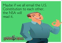 funny nsa contitution