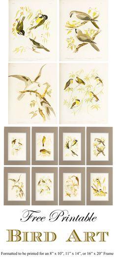 Free Printable Bird Art Gallery Wall_1