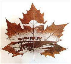 Leaf carving art is one of the newest art forms in recent years. Its inspiration comes from the beauty of nature.  Creating these leaf carvings is no easy process, taking the delicate precision from a skilled artisan. With a knife, the leaf is slowly scraped of its outer layers, eventually revealing a near transparent surface. Special care is given to keep the veins intact to preserve the stability of the leaf.