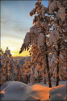 Finnish winter … by Valtteri Mulkahainen500px.com