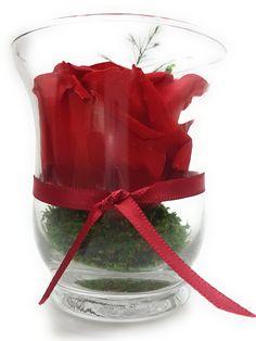Fabelhaft Rosen Te Amo (rosenteamo) on Pinterest #XV_07