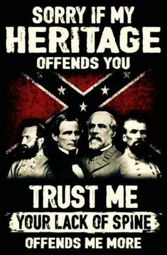 Am not upset but please stay out Southern Heritage, Southern Pride, Southern Sayings, My Heritage, American Pride, American Civil War, American Flag, American History, Native American
