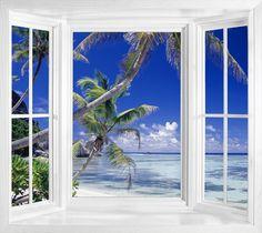 I love all of the windows when they're half window half door!!!