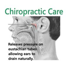 MYTH: Chiropractic is just about back pain TRUTH: Chiropractic is about the expression of life through a properly functioning spine and nervous system. In this study, it reveals how kids with ear infections can be helped with chiropractic.
