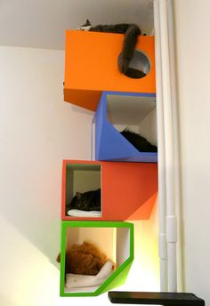 Catissa by Mojorno: Contemporary four-story house for urban cats #cats #CatTree