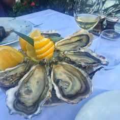 #PortHercule #monaco #montecarlo #lamaree #restaurant #lunch #oysters #wine #food #foodie #foodgasm #foodporn #foodie #seafood #trip #travel #autotrip2015 #путешествие #трип #автотрип2015 #монако #монтекарло #ламаре #вино #устрицы #еда #μονακό #μοντεκαρλο #στρείδια #κρασί by _yanulya_ from #Montecarlo #Monaco