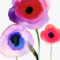 Margaret Berg Art: Pink Poppies Trio