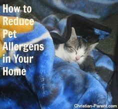 Tips for helping people with allergies reduce the amount of pet allergens in their homes.