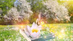 30 Minutes Meditation Music – Mindfulness Meditation for Inner Peace
