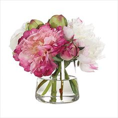 NDI Peony, Rose In Pyramid Glass Vase