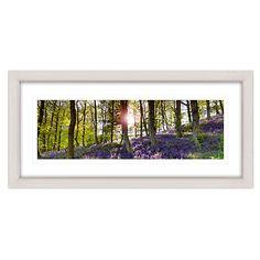 Buy Mike Shepherd - Bluebell Woods Framed Print, 52 x 107cm Online at johnlewis.com