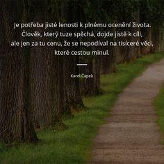 Je potřeba jisté lenosti k plnému ocenění života. Člověk, který tuze spěchá, dojde jistě k cíli, ale jen za tu cenu, že se nepodíval na tisíceré věci, které cestou minul. - Karel Čapek #cesta #život