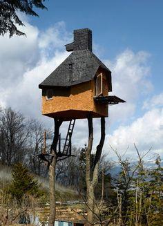 STRANGE BUILDINGS - TEA HOUSE