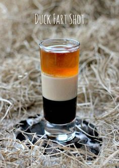 Fart Shot A layered shot of Kahlua, Bailey's and whiskey. Read on for the story behind the name!A layered shot of Kahlua, Bailey's and whiskey. Read on for the story behind the name! Liquor Drinks, Alcoholic Drinks, Whisky, Scotch Whiskey, Irish Whiskey, Whiskey Shots, Fireball Whiskey, Irish Coffee, Cocktail