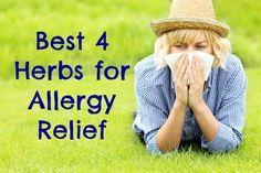 Herbs are a nontoxic effective alternative to over-the-counter or prescription