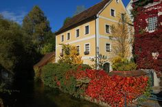 Høstfarger i Steyrdorf. Foto: Arnold Weisz ©