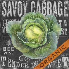 Chalk Veggie Cabbage (Geoff Allen)