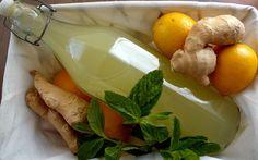Batı mutfağına ait, orijinali mayalandırılarak hazırlanan bir içecek tarifi olan zencefilli gazoz, günümüzde fermantasyon işlemi olmadan da hazırlanıyor.