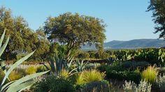 urquijo-kastner estudio de paisajismo / un jardín a los pies de monfragüe