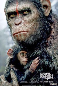 Os Inofensivos: Planeta Dos Macacos - O Confronto