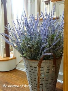 The Essence of Home: How to Make an Impressive Lavender Display Olive bucket Farmhouse Style, Farmhouse Decor, Olive Bucket, Porch Decorating, Decorating Ideas, Decor Ideas, Rustic Decor, Floral Arrangements, Sweet Home