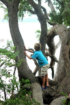 63 places to take kids in Charleston SC Explore these hidden places in Charleston, SC. #charleston #charlestonwithkids