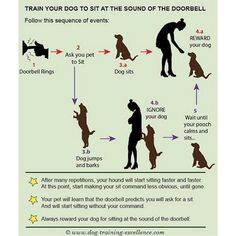 K--Your dog craves your attention. Train them without punishment! #CHS #charleston…