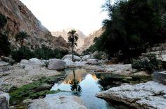 Oman   The Palm Tree, Wadi Shab. credit: ONA. view on fb https://www.facebook.com/SinbadsOmanPocketGuide #Oman #Travel #TravelToOman #MyOman #sinbadpocketguide