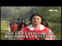 양재천 걷기캠페인 (서울1TV)