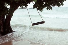 I would love to be on this swing :)