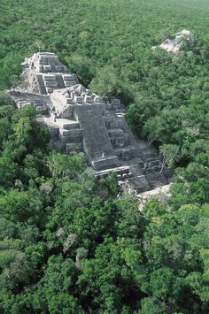 Calakmul, Chiapas. Mayan pyramids lost in the mexican rainforest.