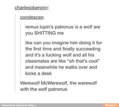 ... the patronus protects you from the worst memories that the dementors dredge up... a werewolf protects Lupin from his worst memories which may very well have been werewolf related when he was in school...
