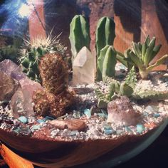 Large glass bowl terrarium with a variety of cactus, succulents, crystals and gemstones in organic soil covered with burnt red sand, silver gravel