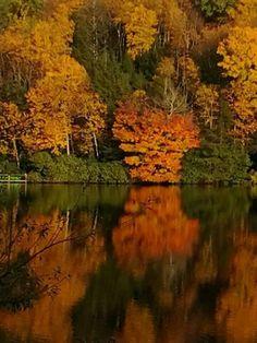 Ripshin Lake  Roan Mountain Tennessee