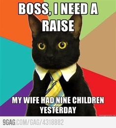 Boss, I need a raise