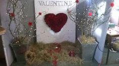 Carol Level 2 Diploma floristry. Valentines shop window display.