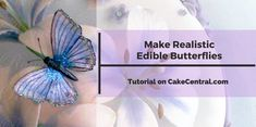 Wafer paper butterflies look like real butterflies, light and airy, when you follow these simple steps. Make them as detailed or...