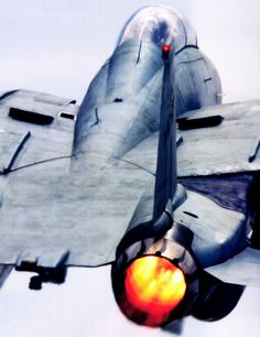 F - 14 with take - off after burners blasting