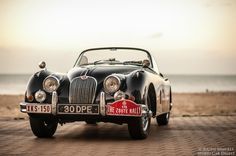 Zoute Grand Prix and Concours 2014 – Report and Photos