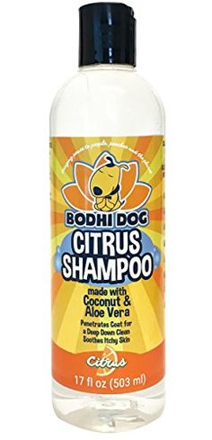 NEW Refreshing Orange Citrus Pet Shampoo | Coconut and Aloe Vera | All Natural Soothing