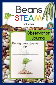 Are you looking for STEAM activities you can do with materials you already have on hand?  This bean STEAM investigation is just the thing!  Your preschool, kindergarten & first grade students will examine beans closely, learning about the parts of a seed & drawing what they see.  They'll plant beans and observe and track their growth, complete graphs, read about the bean life cycle, sequence the life cycle, and sort beans.  Perfect to accompany spring vegetable planting at home or at school!