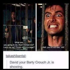 barty crouch jr, david tennant, and doctor who image Virginia Woolf, Sherlock, Chris Evans, Barty Crouch Jr, Hogwarts, Star Trek, Marvel Comics, 10th Doctor, Diy Doctor