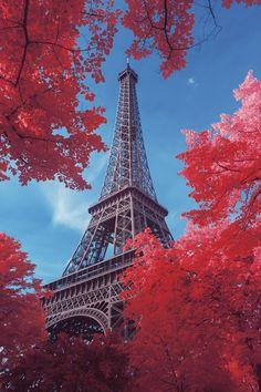 Paris in Autumn Red - Eiffel Tower; Beautiful Paris, Paris Love, Beautiful World, Paris Torre Eiffel, Paris Eiffel Tower, Eiffel Towers, Beautiful Nature Wallpaper, Beautiful Landscapes, Paris Tourist Attractions