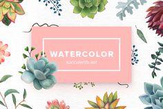 Watercolor Succulents Set by Kotulska on @creativemarket