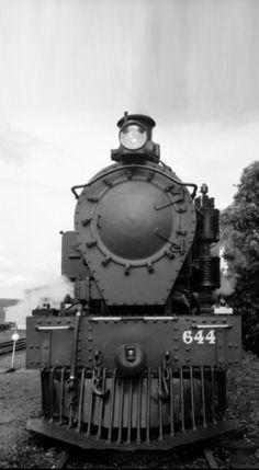 Glenbrook Vintage Railway Train Engines, New Zealand, Trains, Engineering, Modern, Vintage, Electrical Engineering, Primitive, Architectural Engineering