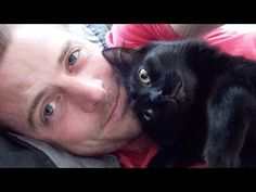 Happy Father's Day: Real Men Love Cats — Cute Overload
