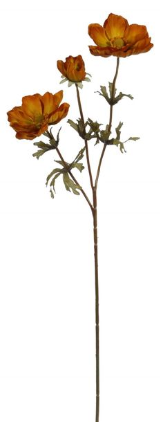 Poppy Anemone X 3 Spray 28''