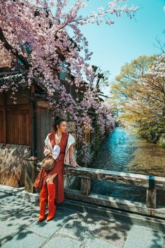 7 best spots for cherry blossoms in - kyoto - stroll along shirakawa Cherry Blossom Outfit, Cherry Blossom Japan, Cherry Blossoms, Cherry Blossom Pictures, Spring Outfits Japan, Japan Spring Outfit Travel, Sleeve Gastrectomie, Japanese Pagoda, Japanese Geisha