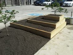 Raised beds at Haven restaurant in Houston.